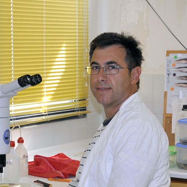 Δρ. Μάνος Κουτράκης, 2ος εισηγητής ημερίδας για ΑΣΦΑ Αλεξανδρούπολης (08/12/2014)