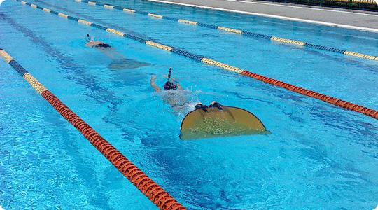 Τεχνική Κολύμβηση με μονοπτέρυγο