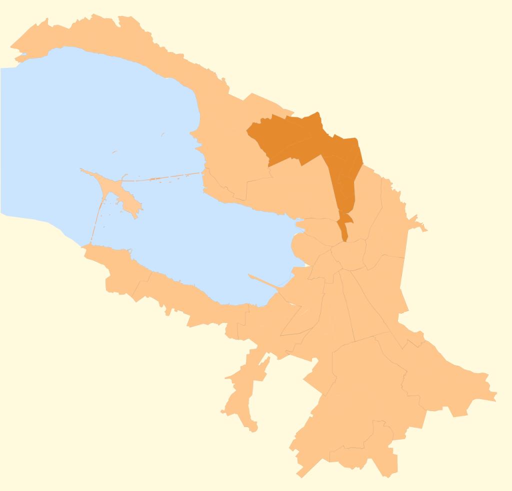 Η αυτοδιοικητική περιοχή του Βίμπορσγκσκι της Αγίας Πετρούπολης, μία από τις συνολικά δεκαοκτώ της πόλης, με 460.000 από  τους συνολικά 4,6 εκατ. κατοίκους