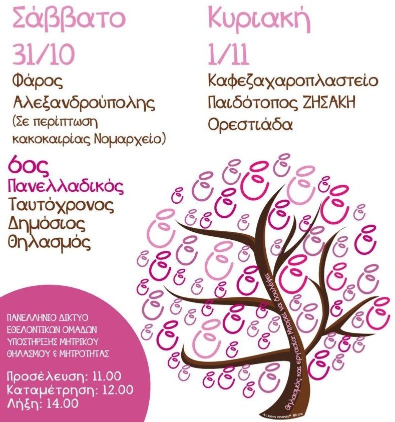 6ος Πανελλαδικός Ταυτόχρονος Δημόσιος Θηλασμός στην Αλεξανδρούπολη στις 31/10/2015