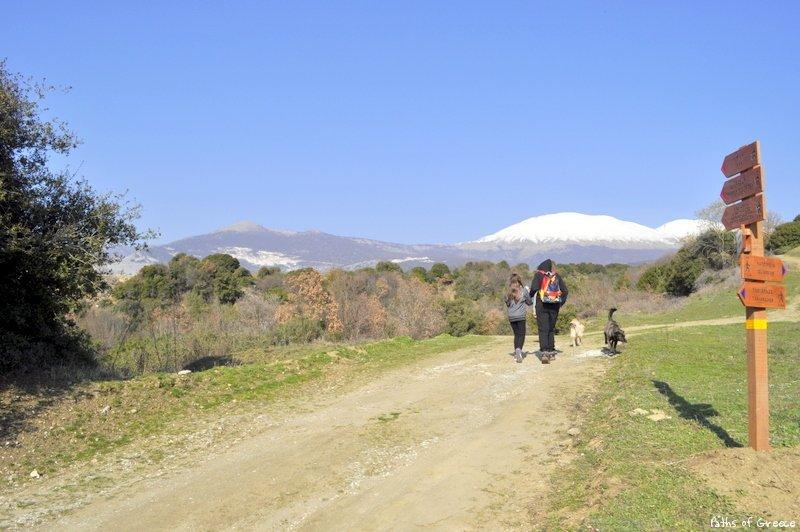 Πινακίδες σε περιπατητική διαδρομή (πηγή: pathsofgreece.gr)